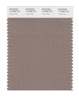 Pantone SMART Color Swatch 17-0808 TCX Taupe Gray