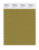 Pantone SMART Color Swatch 17-0836 TCX Ecru Olive