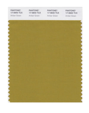 Pantone SMART Color Swatch 17-0840 TCX Amber Green