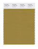 Pantone SMART Color Swatch 17-0843 TCX Bronze Mist