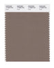Pantone SMART Color Swatch 17-0909 TCX Fossil