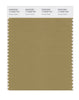 Pantone SMART Color Swatch 17-0929 TCX Fennel Seed
