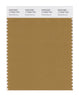 Pantone SMART Color Swatch 17-0942 TCX Medal Bronze