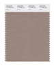Pantone SMART Color Swatch 17-1009 TCX Dune