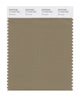 Pantone SMART Color Swatch 17-1019 TCX Elmwood