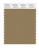 Pantone SMART Color Swatch 17-1028 TCX Antique Bronze