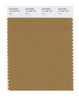 Pantone SMART Color Swatch 17-1036 TCX Bistre