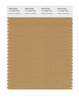 Pantone SMART Color Swatch 17-1045 TCX Apple Cinnamon