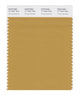 Pantone SMART Color Swatch 17-1047 TCX Honey Mustard