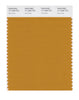 Pantone SMART Color Swatch 17-1048 TCX Inca Gold