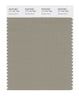 Pantone SMART Color Swatch 17-1107 TCX Seneca Rock