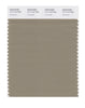 Pantone SMART Color Swatch 17-1113 TCX Coriander