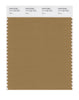 Pantone SMART Color Swatch 17-1125 TCX Dijon