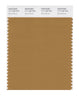 Pantone SMART Color Swatch 17-1128 TCX Bone Brown