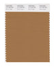 Pantone SMART Color Swatch 17-1134 TCX Brown Sugar