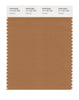Pantone SMART Color Swatch 17-1137 TCX Cashew