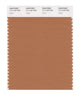 Pantone SMART Color Swatch 17-1143 TCX Hazel