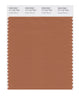 Pantone SMART Color Swatch 17-1147 TCX Amber Brown