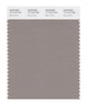 Pantone SMART Color Swatch 17-1210 TCX Moon Rock