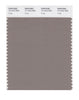 Pantone SMART Color Swatch 17-1212 TCX Fungi