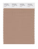 Pantone SMART Color Swatch 17-1223 TCX Praline