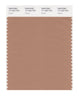 Pantone SMART Color Swatch 17-1224 TCX Camel