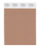 Pantone SMART Color Swatch 17-1225 TCX Tawny Birch