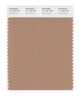 Pantone SMART Color Swatch 17-1226 TCX Tawny Brown