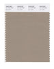 Pantone SMART Color Swatch 17-1312 TCX Silver Mink