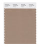 Pantone SMART Color Swatch 17-1319 TCX Amphora