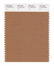 Pantone SMART Color Swatch 17-1330 TCX Lion
