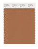 Pantone SMART Color Swatch 17-1336 TCX Bran