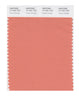Pantone SMART Color Swatch 17-1341 TCX Tawny Orange