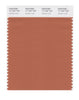 Pantone SMART Color Swatch 17-1347 TCX Autumn Leaf