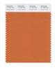 Pantone SMART Color Swatch 17-1353 TCX Apricot Orange