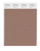 Pantone SMART Color Swatch 17-1417 TCX Beaver Fur