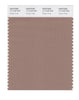 Pantone SMART Color Swatch 17-1418 TCX Ginger Snap