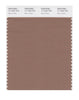 Pantone SMART Color Swatch 17-1422 TCX Raw Umber