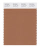 Pantone SMART Color Swatch 17-1430 TCX Pecan Brown