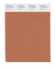 Pantone SMART Color Swatch 17-1436 TCX Raw Sienna
