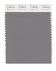 Pantone SMART Color Swatch 17-1500 TCX Steeple Gray