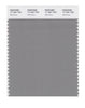 Pantone SMART Color Swatch 17-1501 TCX Wild Dove