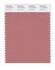 Pantone SMART Color Swatch 17-1524 TCX Desert Sand