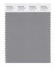 Pantone SMART Color Swatch 17-4402 TCX Neutral Gray