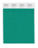 Pantone SMART Color Swatch 17-5633 TCX Deep Green