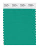 Pantone SMART Color Swatch 17-5638 TCX Vivid Green