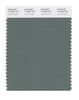 Pantone SMART Color Swatch 17-6009 TCX Laurel Wreath