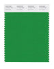 Pantone SMART Color Swatch 17-6153 TCX Fern Green