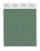 Pantone SMART Color Swatch 17-6219 TCX Deep Grass Green