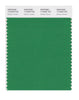 Pantone SMART Color Swatch 17-6229 TCX Medium Green